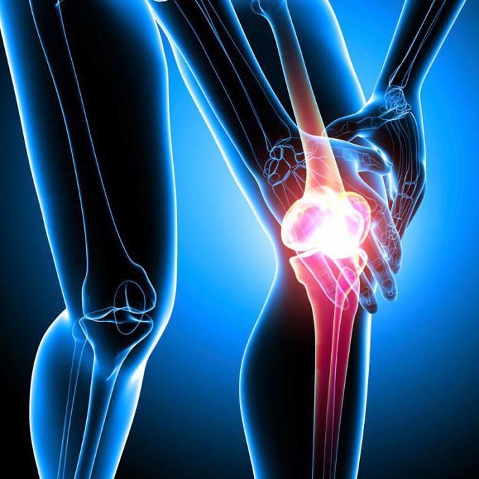 Применение настойки сабельника для суставов результаты побочные эффекты