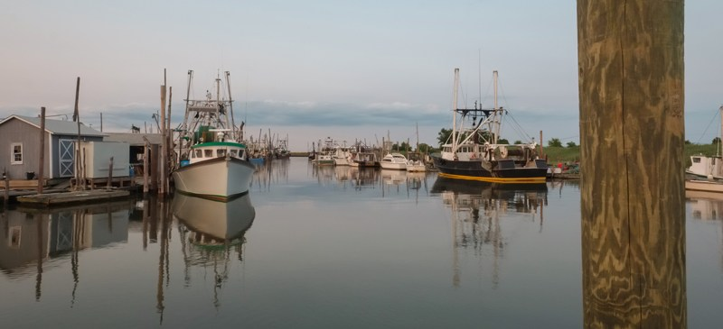 Oyster and claim fishing trawlers