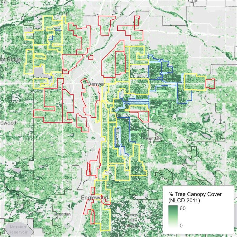 Tree canopy map