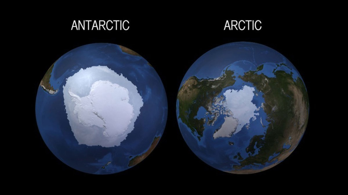 Antarctic and Arctic