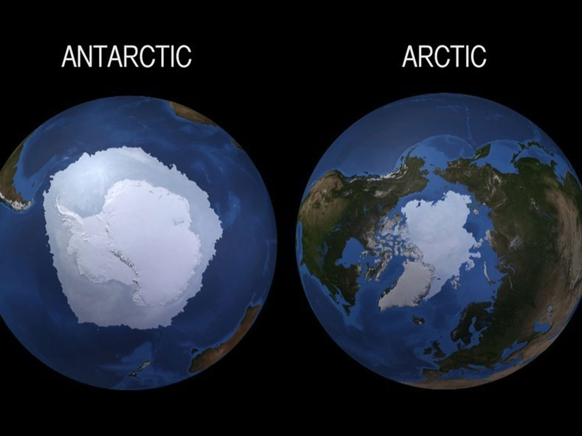 Antarctic and Arctic