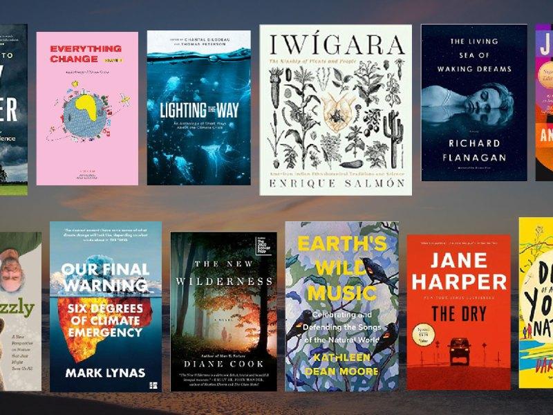 Twelve Book Covers