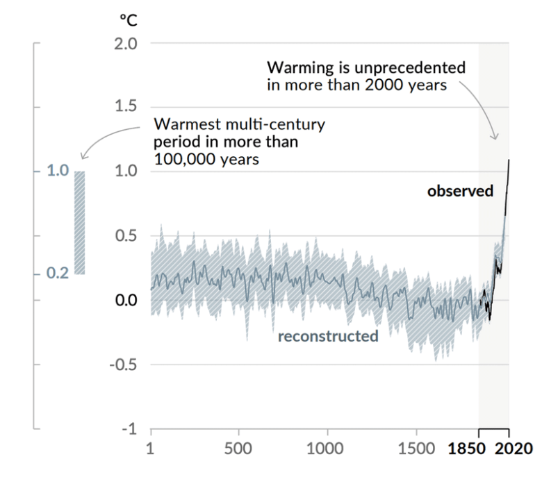 Global surface warming: the hockey stick