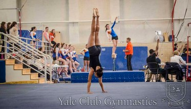 2014_11_09_club_gymnastics_syracuse_043