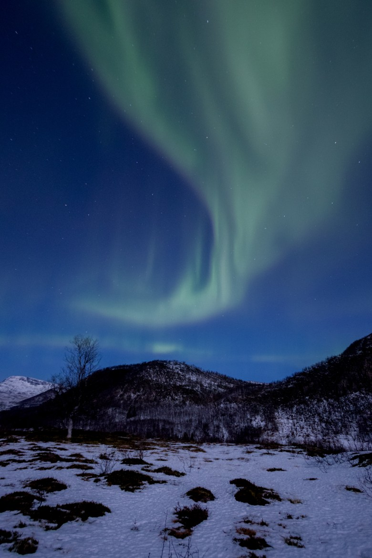 arctic-explorers-6