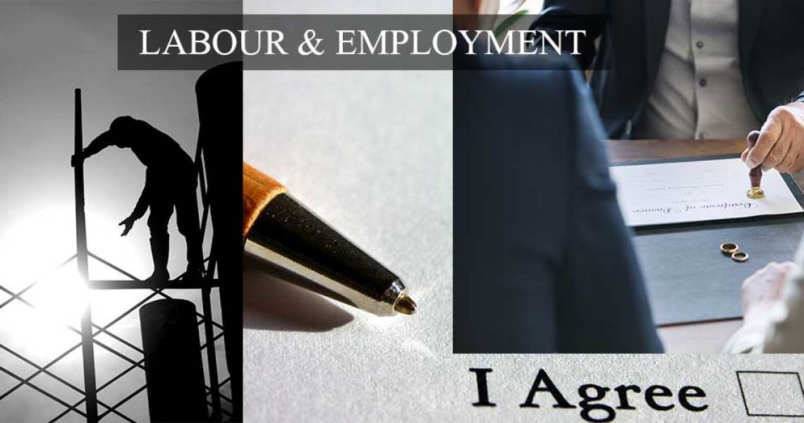Lawful Termination or Arbitrary Dismissal