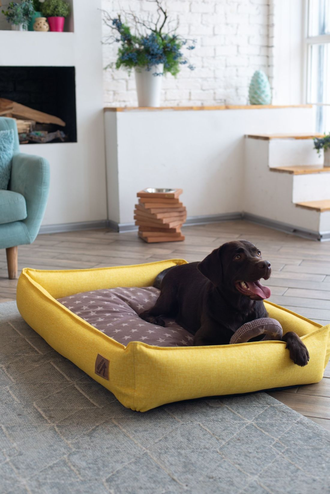 Dog bed with removable washable covers