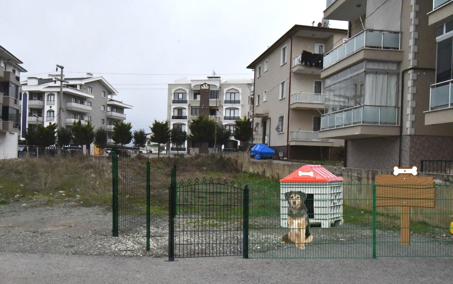 Sokak hayvanları için özel proje
