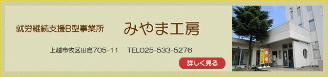inst_miyama_b