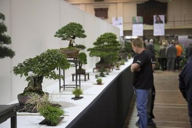 the exhibition 03