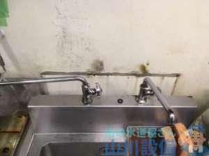 大阪府泉佐野市高松東  シンク水栓水漏れ修理  水栓交換