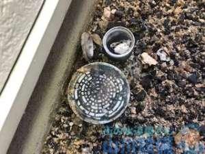敷地内、汚水桝が溢れてる 高圧洗浄機を使った洗管作業で解消!