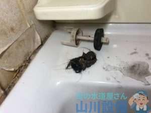 洗面所の流れが悪く水が溢れる ヘアーキャッチャーとトラップ