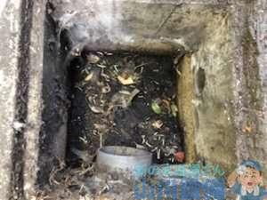 八尾市南亀井町で雑排水桝の清掃は山川設備にお任せ下さい。