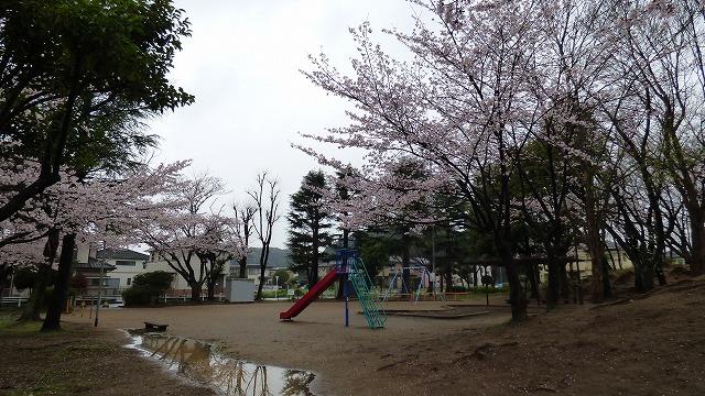 160404Mon-1 我が家の散歩道 (16)