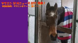 ヤマニン10大ニュース2017
