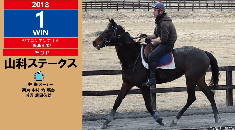 2018年1勝目・ヤマニンアンプリメ