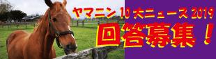 ヤマニン10大ニュース2019・アンケートバナー