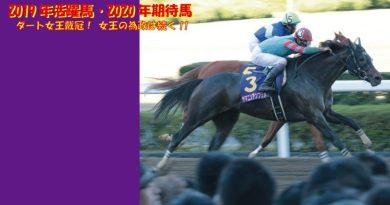 2019年活躍馬・2020年期待馬