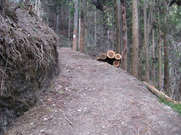 森林作業道#5( 道幅 2.5m ) | やまさ育林
