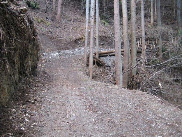 森林作業道#6( 道幅 2.5m ) | やまさ育林
