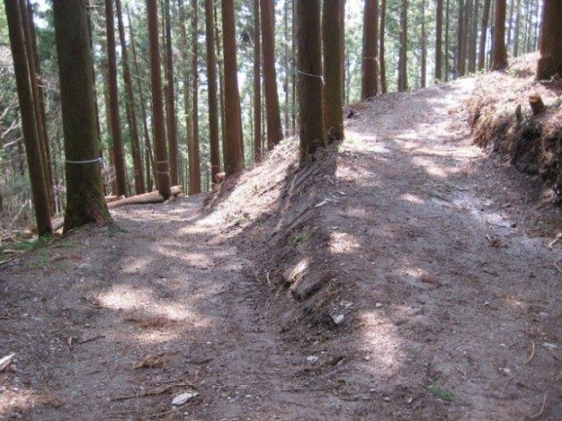 森林作業道#16( 道幅 2.5m でスイッチバック ) | やまさ育林