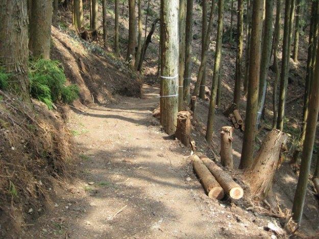 森林作業道作設#7( 道幅2.5m )| やまさ育林