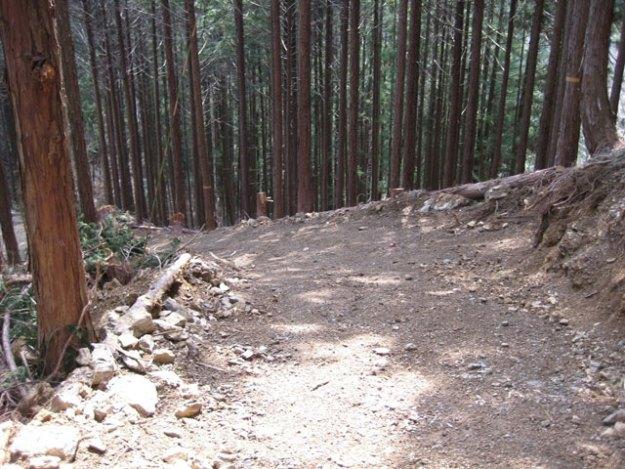 森林作業道作設#17( 道幅2.5m )| やまさ育林