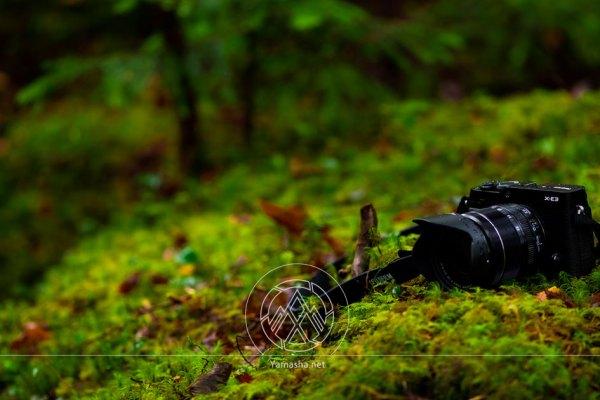 カメラ初心者のための基礎知識と撮影方法