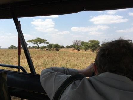 Fotografere første elefant