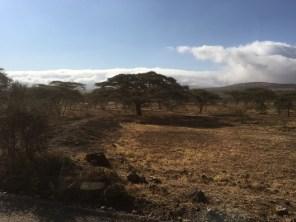 Skyer over Ngorongoro