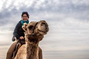 Un tour de chameau