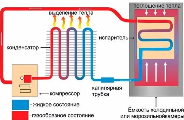 Как работает холодильник: принципы, циклы, режимы - фото 1