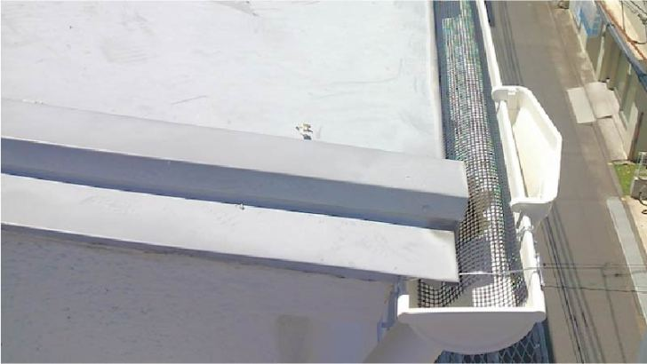 落ち葉防止ネットの設置