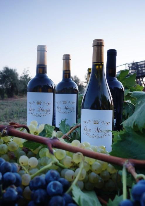 Due Maestà wines 2
