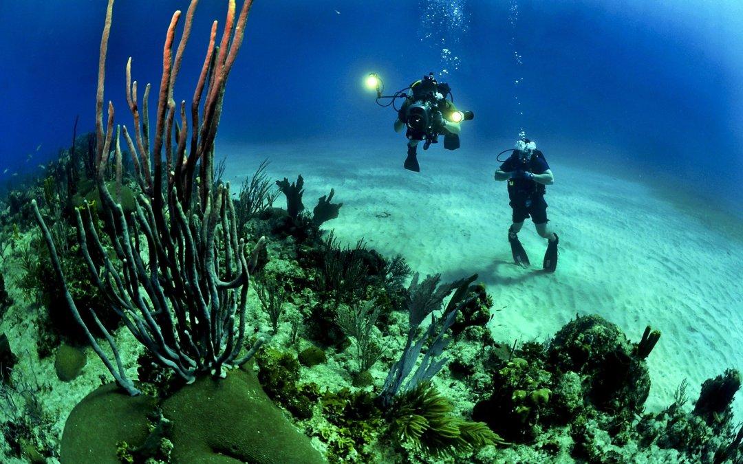 Commencer la plongée sous-marine