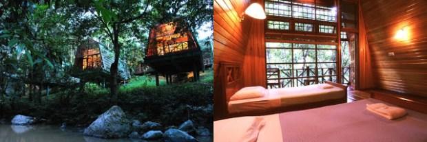 Tabin Wildlife Resort, Kota Kinabalu