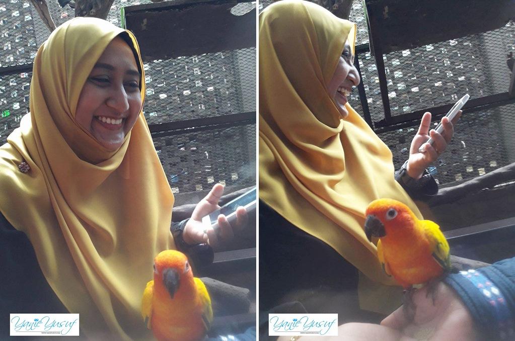 KL Tower Mini Zoo Di Menara Kuala Lumpur