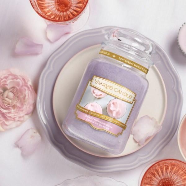 Sweet-Morning-Rose-Yankee-Candle-Large-Photo-2
