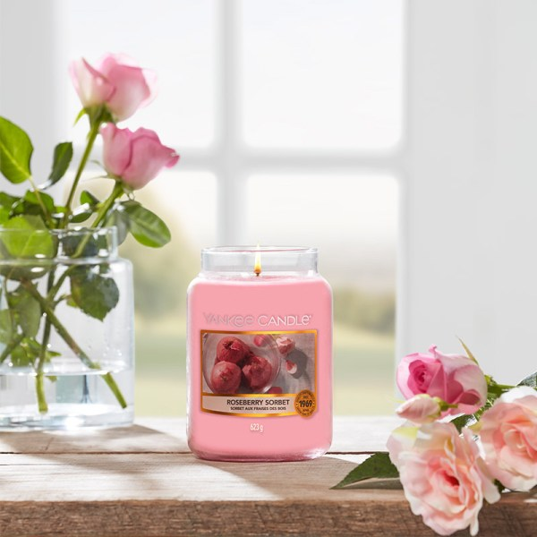 Roseberry-Sorbet---Large-display