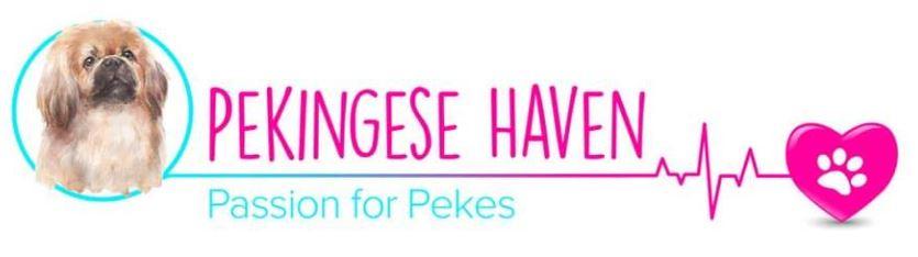 Pekingese-Haven