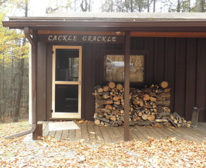 Firewood on cabin porch