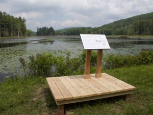 A wooden platform with an Interpretive Sign on grassy bank of a pond