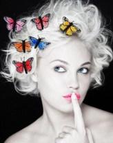 Papillon 79