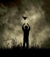The Flight Of Dreams
