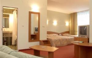 Отель_EDELWEISS_4_Золотые_пески_Болгария-2-417488_700x440