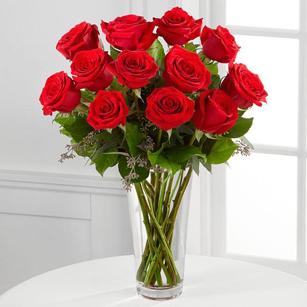 12 Long Stem Red Roses