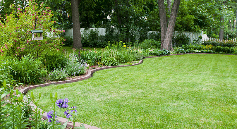 a lush green lawn and beautiful flower beds
