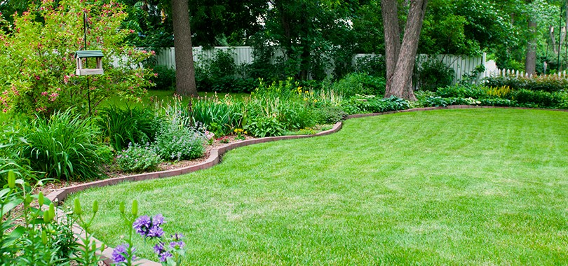 Low Maintance Landscape Ideas Front Yard