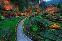 Garden Lighting Design Ideas (DIY GUIDE)